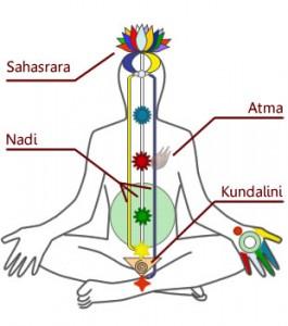 Diagramm-Chakra-Kundalini