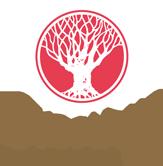 logo-svasthya